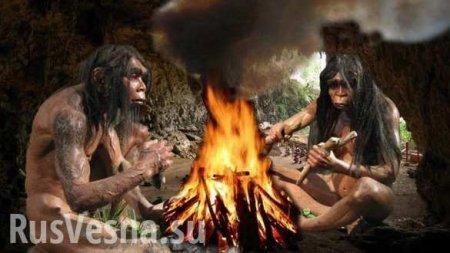 Учёные раскрыли загадку вымирания неандертальцев