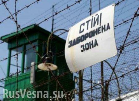 Сидеть будут в кредит? На Украине массово закроют тюрьмы и откроют частные  ...