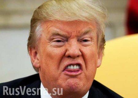 Украинские власти думают о расследованиях для Трампа, — CNN