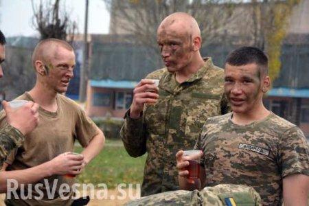 «Мне стыдно затакую армию»: опубликованы кадры «учений» ВСУ (ВИДЕО)