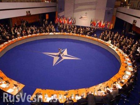СРОЧНО: На саммите НАТО призвали лидеров стран назвать Россию угрозой мироп ...