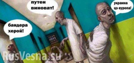 В Совфеде высмеяли фантазии Киева о «возвращении» Крыма и Донбасса