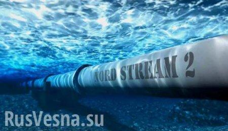 Германия капитулировала перед США из-за Nord Stream 2, — депутат бундестага