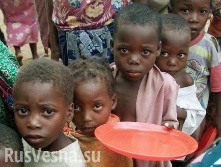 Тимошенко предрекла Украине голод, как в Африке (ВИДЕО)