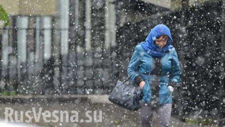 Страшное повышение температуры, этопросто ужас — главный синоптик Украины  ...