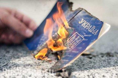 Бывший вице-премьер Украины предложил лишить гражданства «малороссов и ватников»