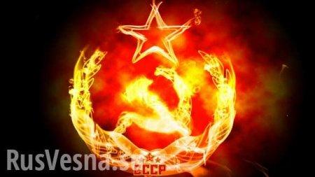 Надо срочно восстановить СССР! — европейский доброволец подвёл итоги по России, Донбассу и Украине (ВИДЕО)