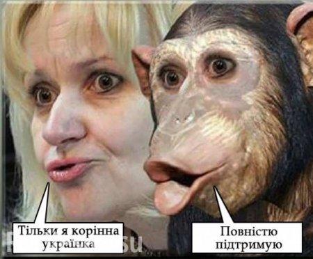«Путинский формат поработил Украину» (ВИДЕО)