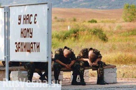 Донбасс: сожжён блиндаж ВСУ с карателями,командиру разведки проломили чере ...