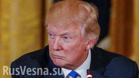 В США рассказали, почему Трамп «незаконно» заморозил финансовую помощь Украине