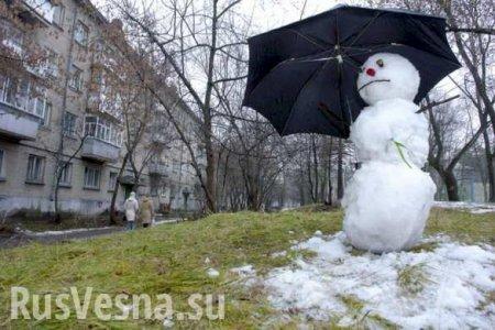 Зимы не будет: вместо неё — крещенская оттепель и ранняя весна