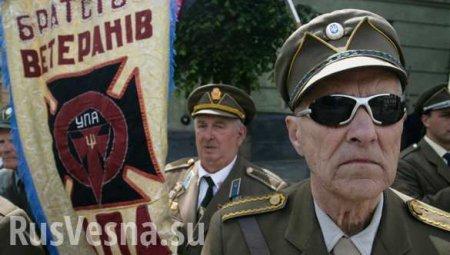 МИДПольши прокомментировал осквернение могилы боевиков УПА