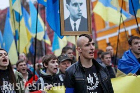 В Харькове неонацисты напали на участников пикета в поддержку русского языка (ФОТО, ВИДЕО)