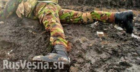 «ВСУшника» с пробитой головой бросили в окоп, как собаку: сводка с Донбасса