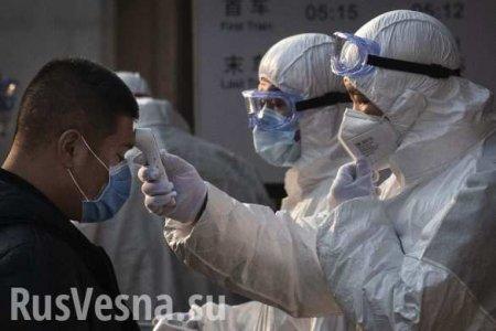 Число жертв коронавируса и заражённых растёт: вирус начал мутировать