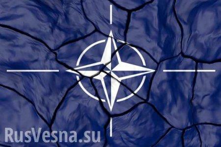 НАТО мертво, ноговорить обэтом нельзя, — Neue Zurcher Zeitung