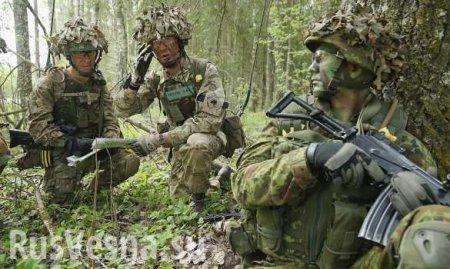 Военные НАТО потерялись влесах Литвы во время учений