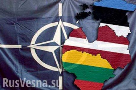 Пока прибалты кланяются США, военные НАТО унижают местных в наркотическом угаре