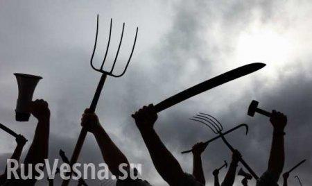 Пошли наухань! Новый украинский бунт — бессмысленный и беспощадный (ВИДЕО)