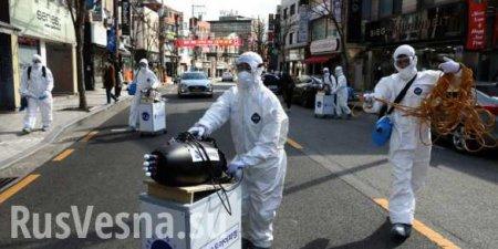Учения «Defender Europe — 2020» могут быть отменены из-за коронавируса?