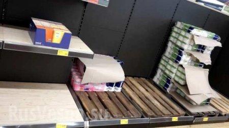 Коронавирус: немцы смели с полок магазинов дешёвые продукты первой необходимости (ФОТО)