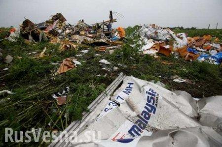 Нидерланды готовили военную операцию на Донбассе после крушения «Боинга»