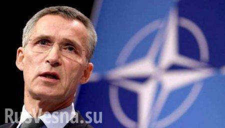 Генсек НАТО выступил с заявлением по «Боингу» MH17