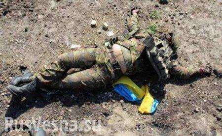 Кровавая жатва: новые потери ВСУ на Донбассе (ФОТО)