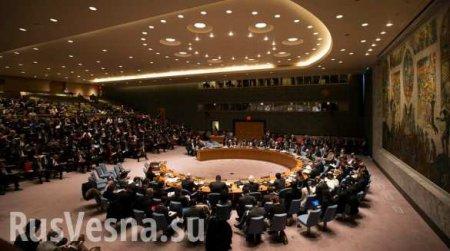 Выступление российского представителя по Крыму шокировало ООН (ВИДЕО)