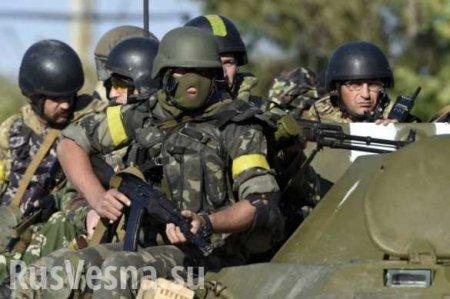 Армия ЛНР предотвратила удар с воздуха, у карателей исчезает вооружение (ВИДЕО)