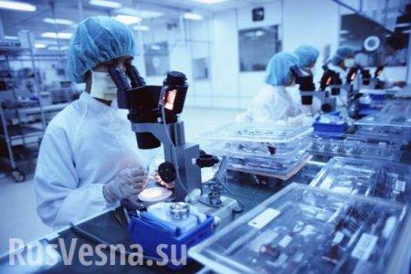 Учёные нашли антитело к коронавирусу