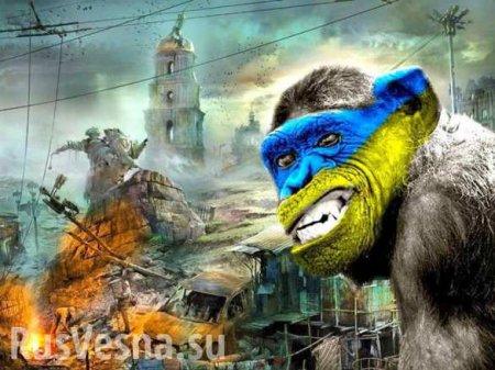 Дикая Украина: Киевлянин пытался украсть ребёнка и изнасиловать мужчину (ВИДЕО)