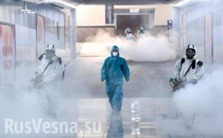 Самоуничтожение государства: именно ему выгоденкоронавирус