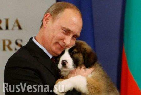 «План Путина: взять Киев и остановить войну на Донбассе» (ВИДЕО)