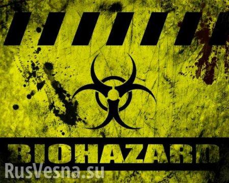 На футбольном матче в Италии «взорвали биологическую бомбу» — учёные