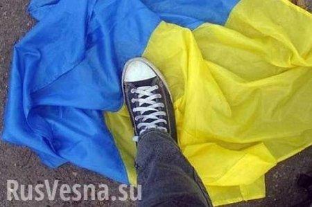 «Повесим украинские флаги»: уЗеленского раскрыли план поДонбассу (ВИДЕО)