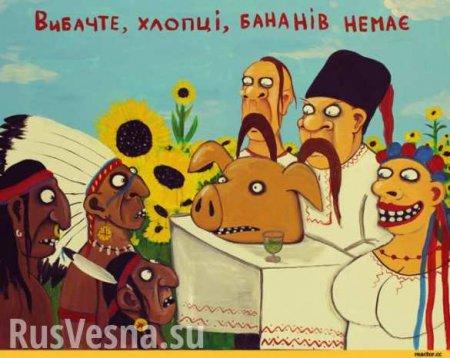 Банановая республика без бананов: Продажа украинской земли состоялась (ВИДЕ ...