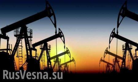 Путин и саудовский принц обсудили добычу нефти