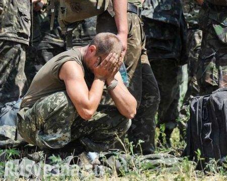 Министр обороны Украины нагло врёт, каратели взывают о помощи к международн ...