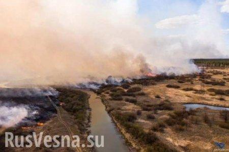 В Чернобыле сгорели более 30% туристических объектов (ВИДЕО)