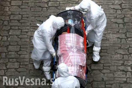 СШАпобили антирекорд почислу смертей откоронавируса засутки