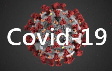 Учёные выяснили, сколько коронавирус держится в воздухе