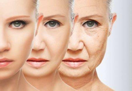 Учёные назвали продукты, ускоряющие старение