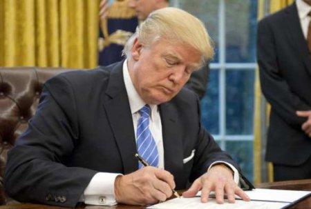 США против Гааги: Трамп подписал указ о санкциях в отношении сотрудников Международного уголовного суда
