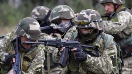 Разведка Армии ЛНР раскрыла подробности о потерях оккупантов (ВИДЕО)