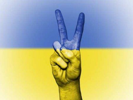 Глава фракции «Слуга народа» обещает «мир на Украине» до конца работы нынеш ...