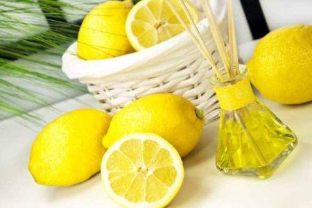 Утешил: «Слуга народа» привёз жителям взорванного дома лимоны (ФОТО, ВИДЕО)