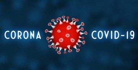 Почти 600тыс. заболевших: коронавирус вРоссии