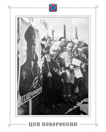 «Пластуны» из Европы: война на Донбассе, сепаратизм и русофобия (ФОТО)
