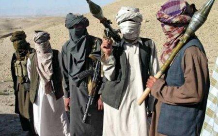 Пентагон опубликовал доклад о связях России и «Талибана»